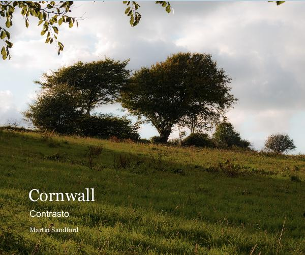 View Cornwall by Martin Sandford