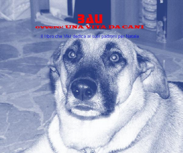 Click to preview BAU photo book