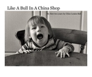 Like A Bull In A China Shop - photo book