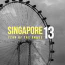 Singapore '13, as listed under Arts & Photography