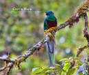 Costa Rica vol. 2 - Travel photo book