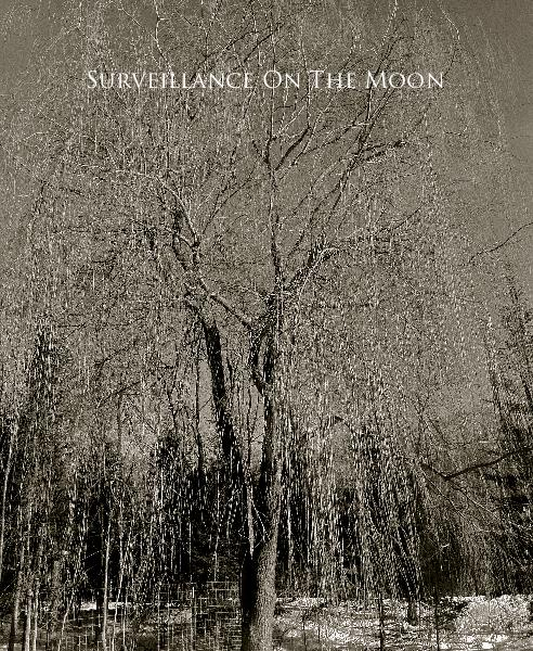 Click to zoom Surveillance On The Moon photo book cover