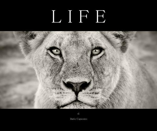 Click to preview LIFE photo book
