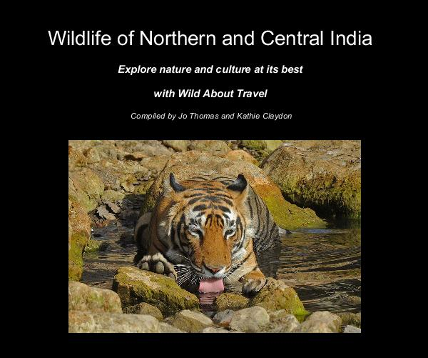 View Wildlife of Northern and Central India by Compiled by Jo Thomas and Kathie Claydon