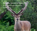 Natural Images of Mull - Arts & Photography photo book