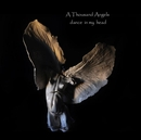 A Thousand Angels dance in my head - Arts & Photography photo book
