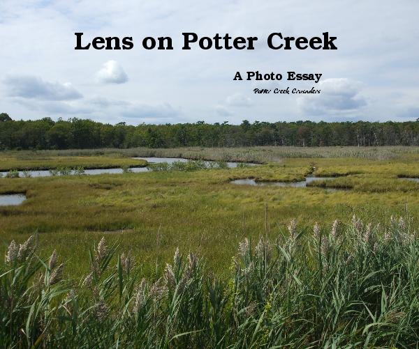 Click to preview Lens on Potter Creek photo book
