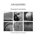 AWAKENING, as listed under Portfolios