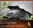 Ecuador and the Galapagos Islands, as listed under Travel