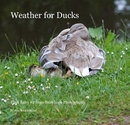 Weather for Ducks - Arts & Photography photo book