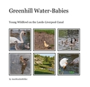 Greenhill Water-Babies