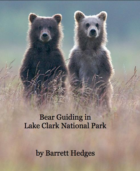 View Bear Guiding in Lake Clark National Park by Barrett Hedges