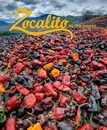 Zocalito to the source - Cooking photo book