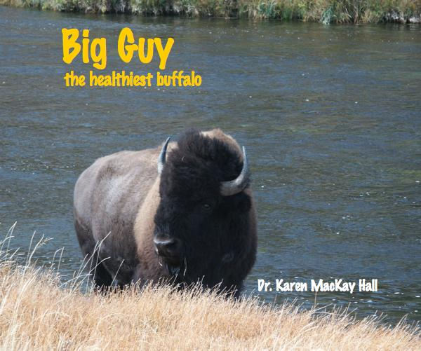 View Big Guy the Healthiest Buffalo by Karen MacKay Hall