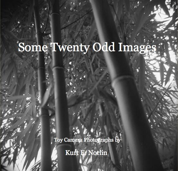 Click to preview Some Twenty Odd Images photo book