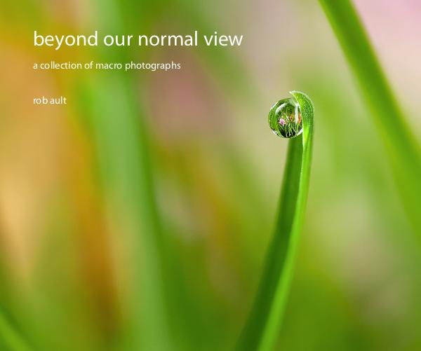View beyond our normal view by rob ault