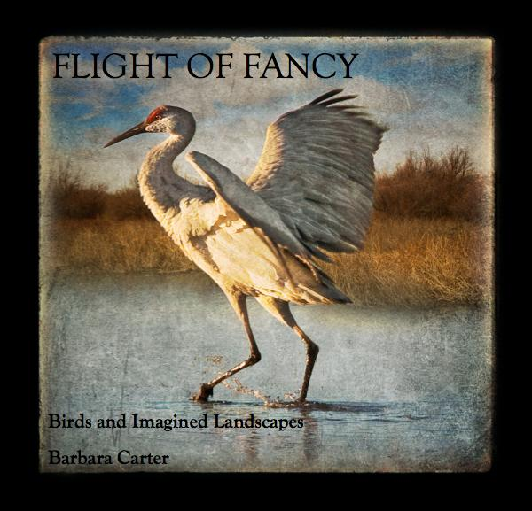 View FLIGHT OF FANCY by Barbara Carter