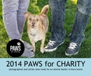2014 Paws For Charity - No commercial y fundraising libro de fotografías