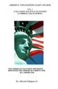 AMERICA: THE SLEEPING GIANT AWAKES VOL I A TEA PARTY POLITICAL PLATFORM [ A PATRIOT'S CALL TO ACTION ], as listed under History