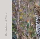 The wild cats of Africa, as listed under Fine Art Photography