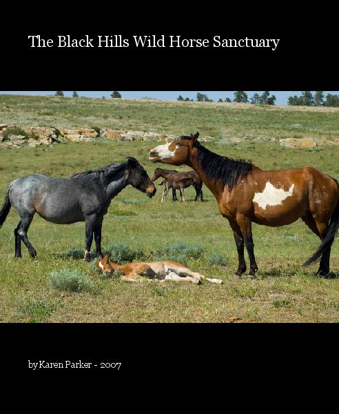 Ver The Black Hills Wild Horse Sanctuary por Karen Parker - 2007