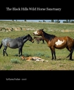 The Black Hills Wild Horse Sanctuary, as listed under Nonprofits & Fundraising