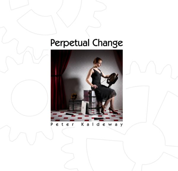 View Perpetual Change Pocket Edition by Peter Kaldeway