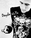 Dayde Wolfe Volume 1, as listed under Arts & Photography