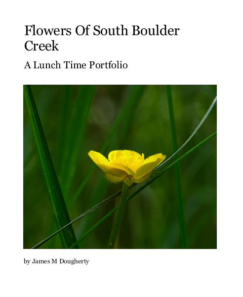 Click to preview Flowers Of South Boulder Creek photo book