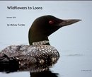 Wildflowers to Loons - Arts & Photography photo book