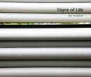 Signs of Life, as listed under Fine Art Photography