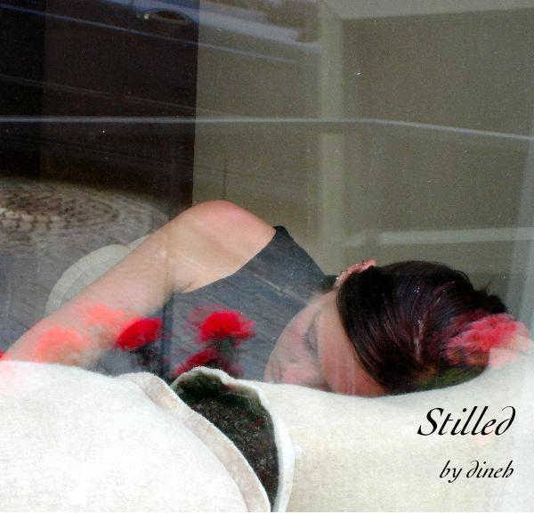 Click to preview Stilled in 7X7 photo book