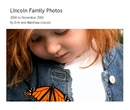 Lincoln Family Photos, as listed under Arts & Photography