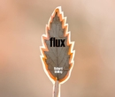 Flux (Special Edition), as listed under Fine Art