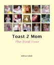 Toast 2 Mom The First Year, as listed under Blogs
