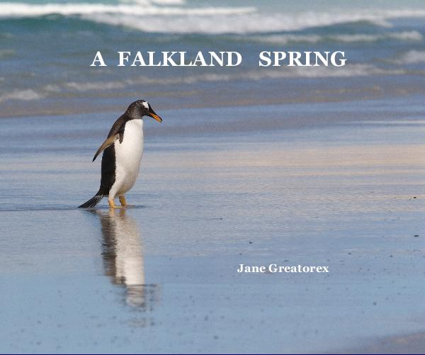 View A FALKLAND SPRING by Jane Greatorex ARPS