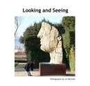 Looking and Seeing