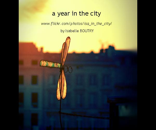 Ver a year in the city por by Isabelle BOUTRY