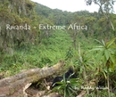Rwanda - Extreme Africa, as listed under Travel