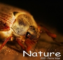 Nature 2010 (small) - Fine Art Photography photo book