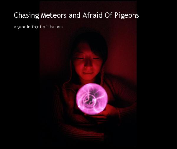 View Chasing Meteors and Afraid Of Pigeons by pwadey
