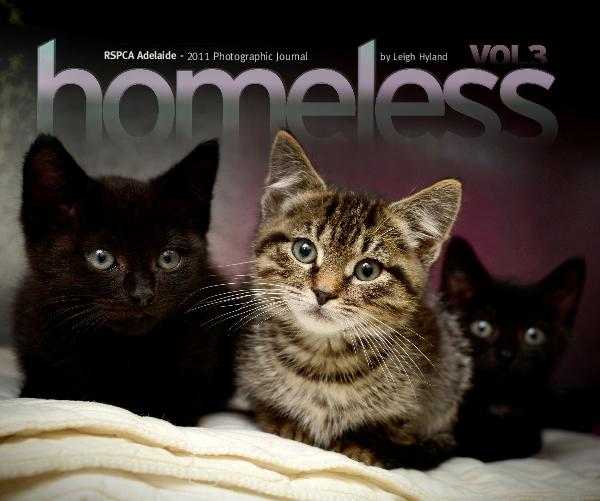 Ver Homeless Vol.3 (v3.2) por Leigh Hyland