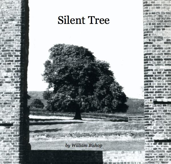 View Silent Tree by William Bishop