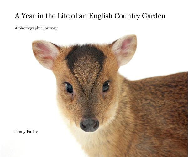 View A Year in the Life of an English Country Garden by Jenny Bailey