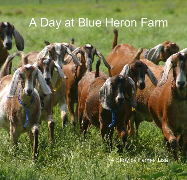 View A Day at Blue Heron Farm by Lisa Seger