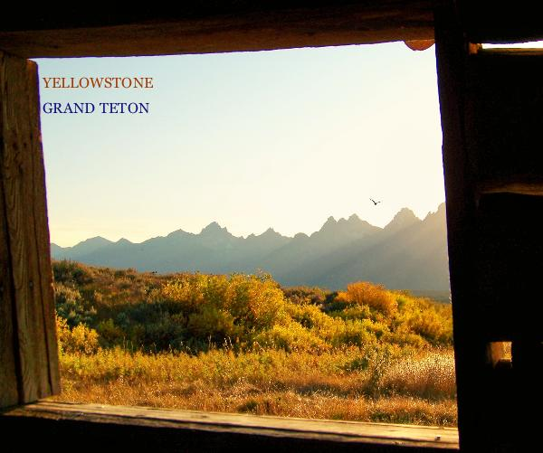 View Yellowstone & Grand Teton by Ilona Dzurek
