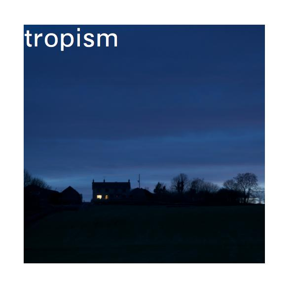 Click to preview Tropism photo book