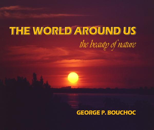 View THE WORLD AROUND US by George P. Bouchoc