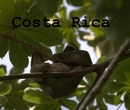Costa Rica - photo book