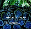 Moment of Silence *the poetry of trees and leaves* - Fine Art Photography photo book